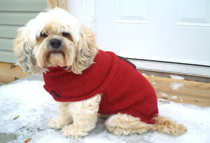 DOG SWEATERS FOR SALE Peterborough Peterborough Area image 1