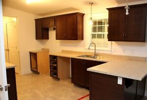 Limited time special on New 3 Bedroom & 16 x 74 ft. Mini - Home