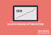 SEO - Fee SEO Analysis and Quick Results