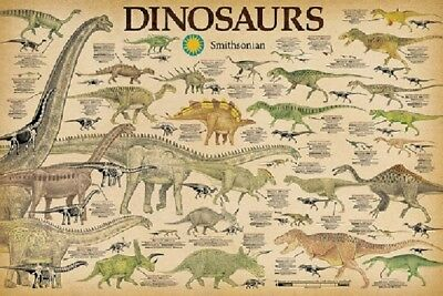 DINOSAURS CHART Science Poster by Smithsonian, size 24x36 - Dinosaur Posters