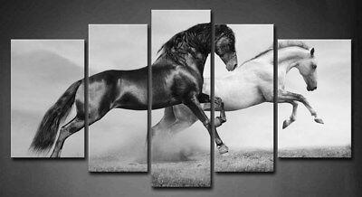 Framed Horse Wall Art Home Decor Black White Horses Canvas Print Animal Pictures (Framed Pop Art)