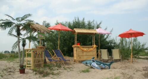 ≥ hawaii feest tropical party themafeest hawai decoratie