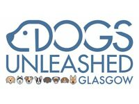 Dogs Unleashed Glasgow - Dog Walking Adventures/Dog Walker/Dog day care/Bearsden/Clydebank/Milngavie