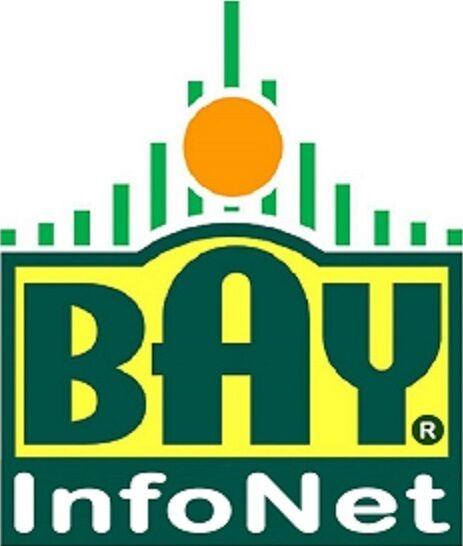 Bay InfoNet Corp.