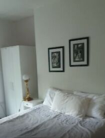 Spacious Double Room to Rent in Shared Flat on Seven Sisters Road, Islington N4. For Female Only