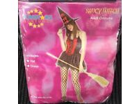 Brand New Adult SAUCY WITCH Fancy Dress Costume