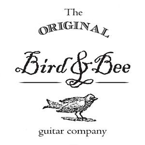 Guitar Repair, Restoration & Sales at Bird & Bee Guitar Company