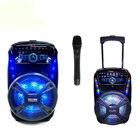 KARAOKE CASSA AMPLIFICATA FEIYIPU ES-81 Microfono Bluetooth Usb Sd Telecomando