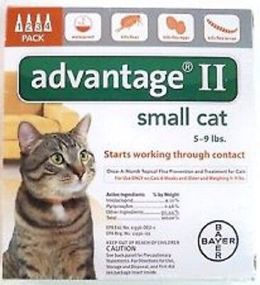 Bayer Advantage Ii For Small Cats 5 9 Lbs   4 Pack    Genuine Epa Approved