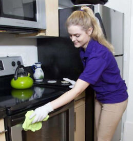 Professional,Domestic Cleaner,Reliable Cleaning Lady,House Cleaner,End of Tenancy Cleaning,Cleaner