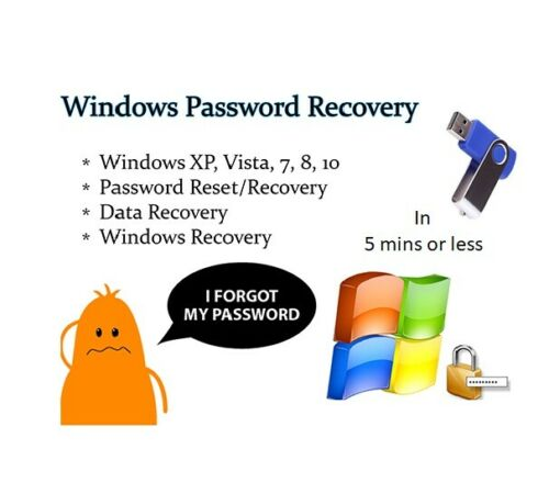 Windows Password Recovery Reset USB Boot for Windows 10, 8.1, 8, 7, Vista,Server