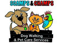 Pet sitters needed for Derby and surrounding areas