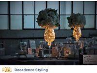Event Planning & Wedding Decoration *Decadence Styling*