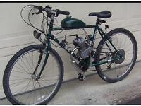 Mountain bike with 50cc engine kit