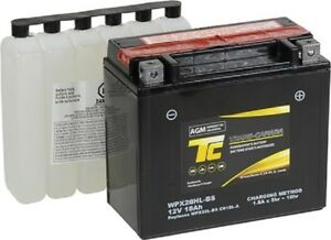BATTERIES, STARTERS, BRAKE PADS AND MORE ELECTRICAL PARTS