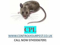 Pest control Rat Mice Cockroaches Bedbugs Exterminator London 24/7 NPTA-RSPH CALL NOWW