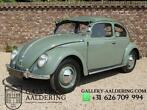 VW Käfer / Beetle Type 1 Splitwindow With Rare Crotch Coole