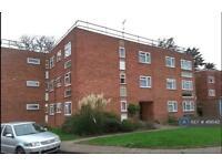 1 bedroom flat in Hendon Lane, Finchley, N3 (1 bed)