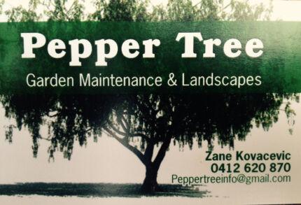 Pepper Tree Wahroonga Ku-ring-gai Area Preview