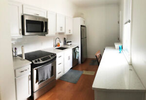 Room + washroom +kitchenette Downtown Ryerson/George Brown