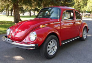 I want to buy a 1973, 74, 75 Super Beetle with original sunroof