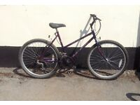 "LADIES RALEIGH MOUNTAIN BIKE 18"" FRAME £45"