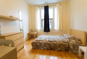 1 furnished bdrm in 9 bdrm apartment for students & young prof
