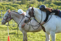 Horsecamps for Girls = Summer FUN! and LEADERSHIP