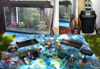 Aquariums and Accessories...Great Package Deal!