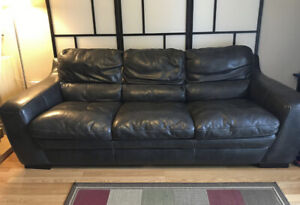 Free Sofa - Pickup Only
