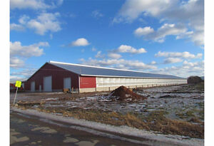 YOU CAN STILL GET YOUR STEEL BUILDING ORDERBEFORE THE SNOW FALLS Kawartha Lakes Peterborough Area image 2
