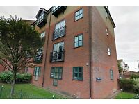 Nice 1 Bed Flat in Enfield