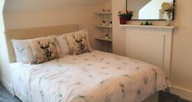 Balham: NEWLY decorated double bedroom available Now