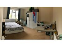 Rooms to rent shared flat