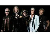 Aerosmith Standing Ticket, Dublin