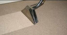 Professional Carpet Cleaning in Reading