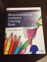 Anatomy Book (Can Color)