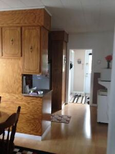 House for sale in Shearstown! Great starter home! St. John's Newfoundland image 4