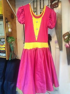 Disney Princesses Princess Dress Gown Theatrical Show Quality Halloween Costume  (Theatrical Quality Halloween Costumes)
