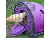 Petz Podz medium purple chicken coop with galvanised steel run, similar to Eglu