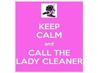 ANNA Lady Cleaner