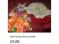 Girls 3-4 years fancy dress bundle