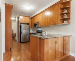 Solid wood and veneer kitchen cabinets