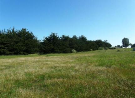 Bridgetown - Land for Sale