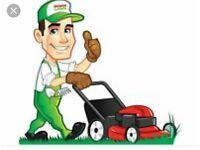 Grass cutting & garden maintenance