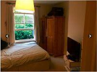 Nice room close to Clapham Common