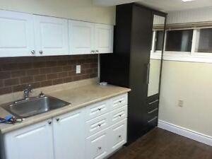 FURNISHED BACHELOR APARTMENT AVAILABLE MARCH 1, 2017 Kingston Kingston Area image 1