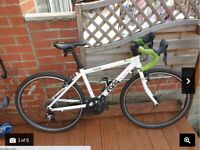 Frog 67 Road Bicycle Immaculate Condition Mechanically and Cosmetically 14'' Frame Ideal