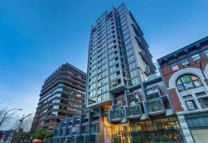 BRAND NEW STUNNING 1 BED DOWNTOWN FOR RENT-FURNISHED & ALLOW PET
