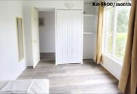 Rooms for rent, walking distance to UoM